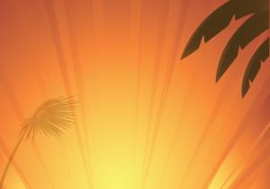 cartell-estiu